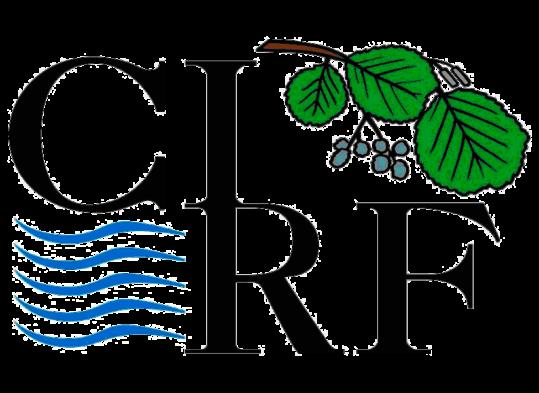 logo cirf