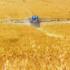 """Pubblicazione del """"Rapporto nazionale pesticidi nelle acque"""""""