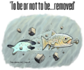 To be or not to be… removed | International seminar on dam removal