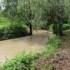 Piemonte, corridoio verde lungo il Torrente Tiglione dalla sorgente alla confluenza nel Fiume Tanaro