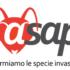 23-25 giugno 2020 – Convegno conclusivo online del progetto Life ASAP dedicato alle specie aliene invasive