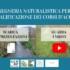 Video e presentazioni del webinar: L'INGEGNERIA NATURALISTICA PER LA RIQUALIFICAZIONE DEI CORSI D'ACQUA