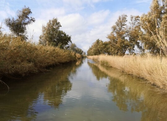canale di bonifica - caso pilota per la transizione ecologica dei territori agricoli