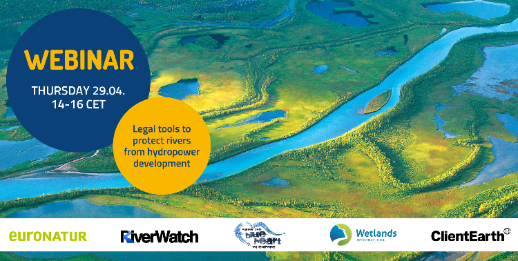 29 aprile 2021 - Wetlands International European Association: presentazione del toolkit normativo per la protezione dei fiumi dalle costruzione delle centrali idroelettriche